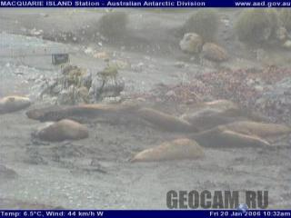 Macquarie Island station webcam