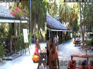 Веб-камера в дайвинг центре Werner Lau на Мальдивах