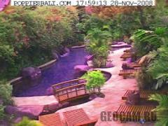 Poppies Bali Webcam