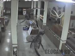 Веб-камера в музеї геології (Сполучені Штати Америки)