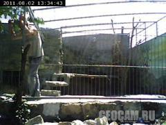 Веб-камера в домашньому зоопарку в Василь'ївці (Василівка, Україна)