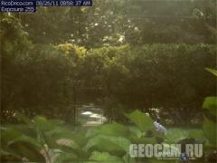Веб-камера в Ист-Хемптон