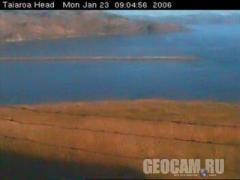 Taiaroa Heads webcam