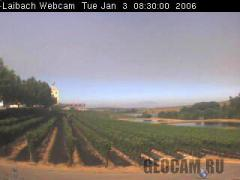 Laibach Vineyards webcam (South Africa)