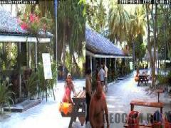 Dive Center Werner Lau WebCam, Maldives