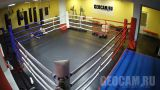 Webcam by the boxing ring «Saint Petersburg Academy of Boxing» (Saint Petersburg, Russia)