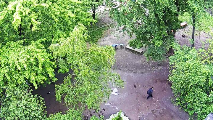 Веб-камера у детской площадки в Чернигове