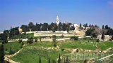 Mount Zion Webcam, Jerusalem