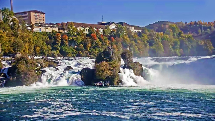 Rhine Falls Webcam